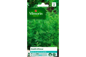 Aneth officinal - Semences Vilmorin 5 gr