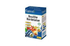 Bouillie Bordellaise
